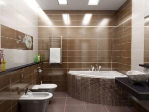 Плюсы и минусы совмещения ванной комнаты с санузлом
