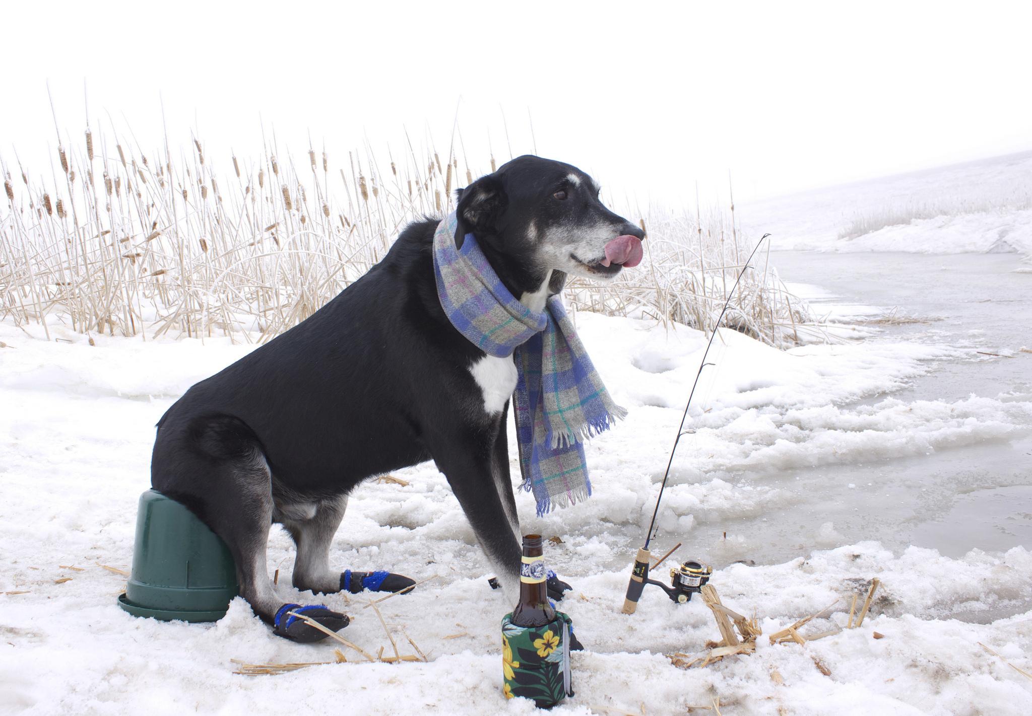 Готовим удочки летом! Ловим рыбу зимой!