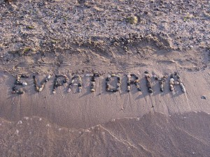 Отдых в Евпатории