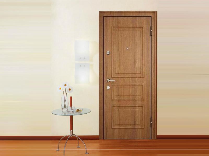 Входная дверь - свойства, особенности