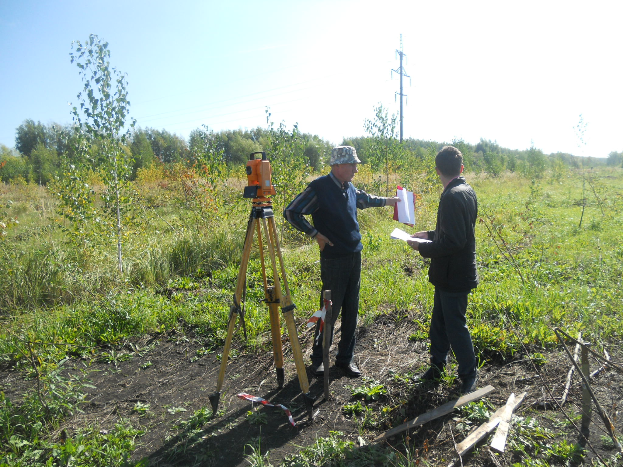 Основные рекомендации и советы по облагораживанию земельного участка