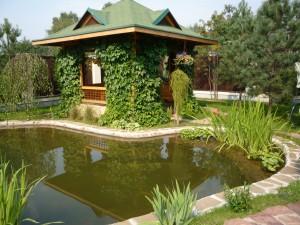 Как построить пруд на загородном участке