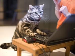 Игры на компьютере