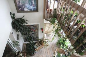 Шесть шагов для того, чтобы сделать свой зимний сад