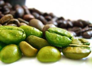 Зеленый кофе – новая панацея для худеющих?