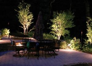 Огни ночного сада