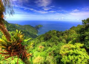 Туры в Тринидад