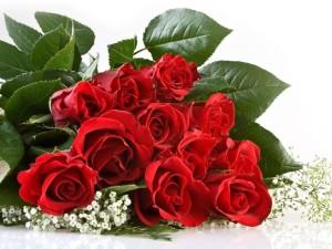 Цветы — великолепный подарок любимой девушке