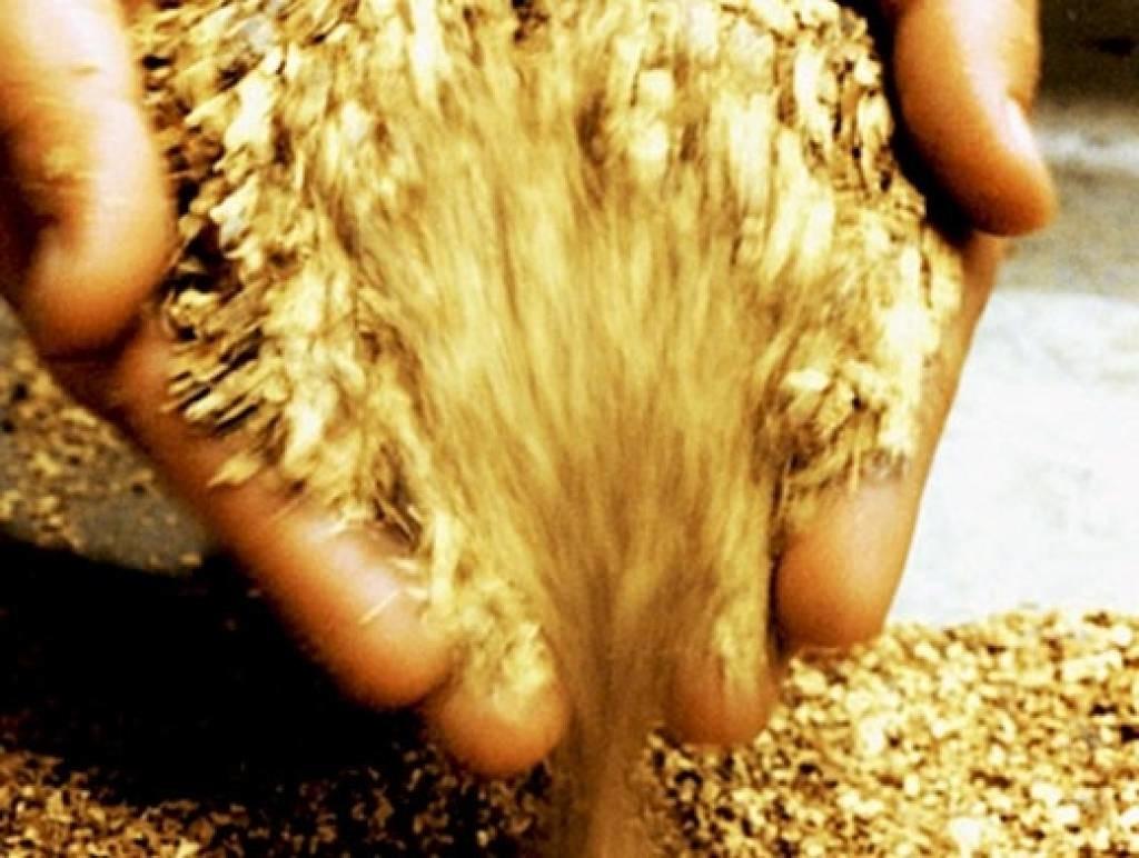 Что такое золотая лихорадка