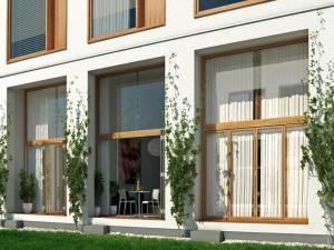Деревянные окна – безопасность и экологическая чистота