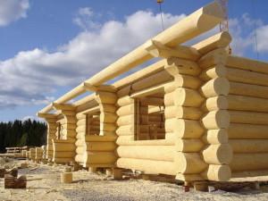 Стоит ли строить из дерева