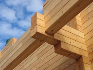 Древесина — популярный материал в современном строительстве