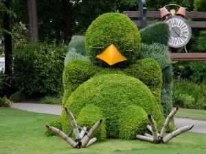 Топиар - зеленая скульптура в саду!