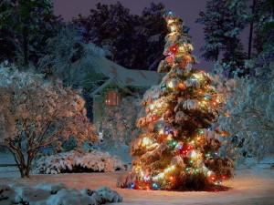 Восемь идей как украсить двор к новому году!