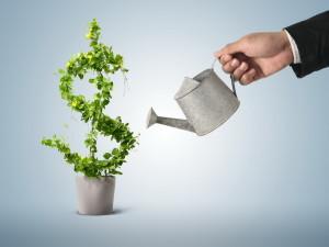 Инвестирование в интернете — покупка сайтов