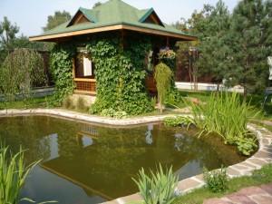Как обустроить на своем участке небольшой водоем?