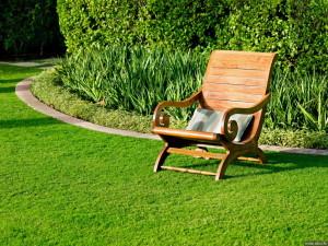 Как сделать газон на приусадебном участке аккуратным?