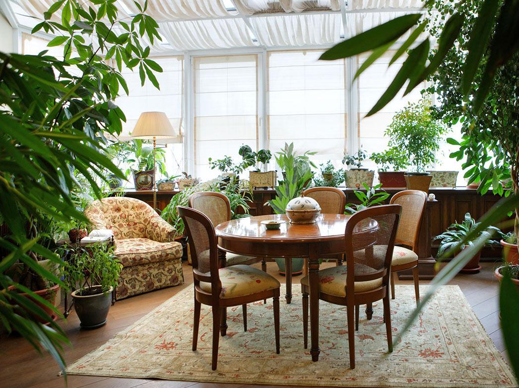 Как устроить зимний сад в квартире?