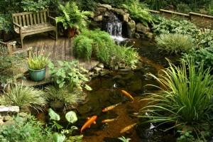 Удивительный и эстетичный сад на воде