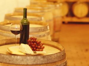 Винные туры во Францию. Посещение лучших виноградников
