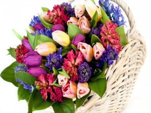 Какие цветы купить в подарок?