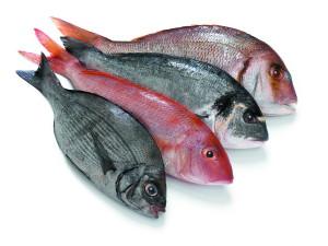 Несколько советов по приготовлению рыбы