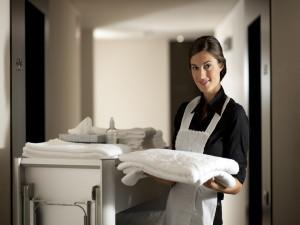 Условия труда домработницы в загородном доме