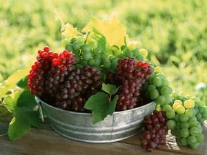 Виноград: полезные свойства