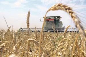 Безопасность современного фермерского хозяйства в Украине