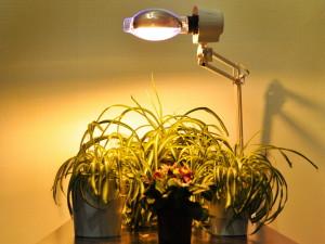 Естественное и искусственное освещение