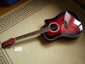 Как выбрать 12-и струнную гитару
