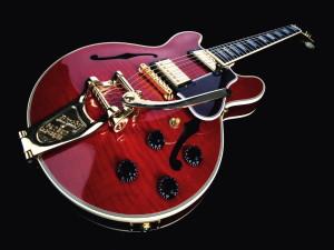 Как выбрать полуакустическую гитару