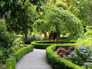 Обустраиваем парк на садовом участке.
