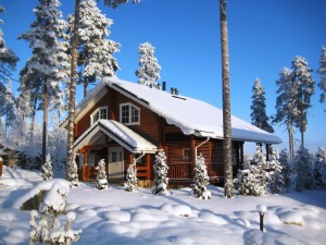 Отдых в Подмосковье зимой