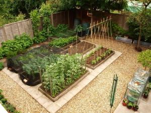 Ландшафтный дизайн для начинающего садовода