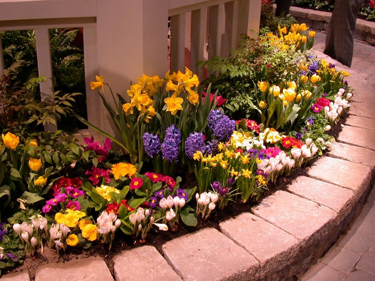 Посадка цветов в саду 1 фотография