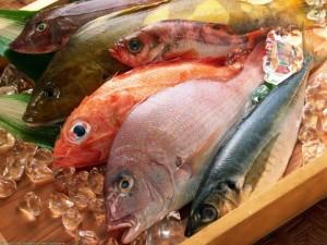 Приобретение свежей рыбы