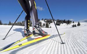 Какие выбрать беговые лыжи