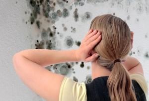 Что такое плесень и почему она появляется в доме