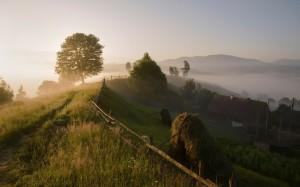 Как переехать деревню и начать деревенскую жизнь