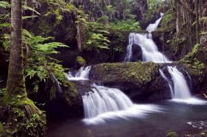 Отпуск в Абхазию, озеро Рица, Гегский (Черкесский) водопад