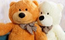 Большие медведи